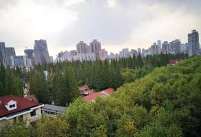 上海新华路花园洋房出租,246㎡独栋